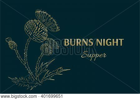 Burns Night Supper Card. Burns Night - National Holiday In Scotland. Template For Invitation, Poster