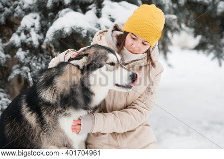 Young Woman Pet With Love Alaskan Malamute In Winter Forest. Close Up.