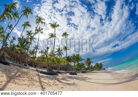 Punta Cana, Dominican Republic - March 11, 2020: Beautiful Wild And Sand Beach In Punta Cana, Domini