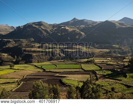 Panoramic View Of Green Stepped Terraces Anden In Andean Mountain Village Town Maca Colca Canyon Are