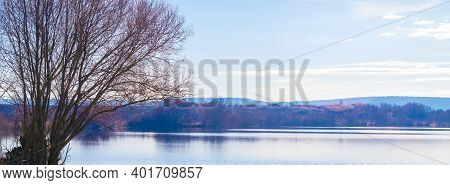 Bare Tree By The River In Early Spring, Spring Background, Panorama