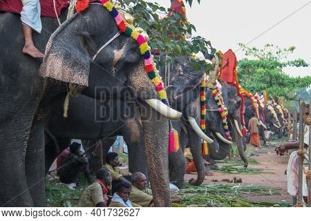 Varkala, India - February 4, 2011: Decorated Elephants And People At A Traditional Elephant Parade