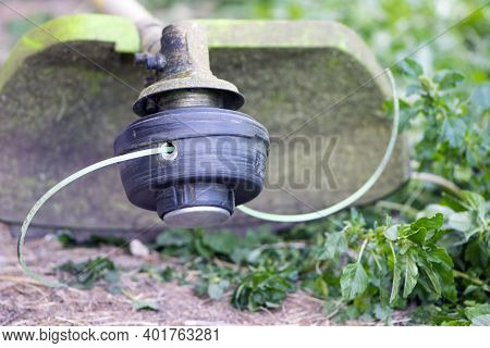 Electric Mower On The Grass. Trimmer With Cut Fresh Green Grass On The Lawn. Close-up. Gardening Equ