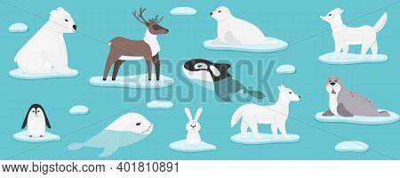 Arctic Marine Animals. Christmas And New Year 2021 With Cute Animals. Collection Of Sea Animals On I