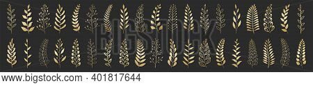 Set Of Gold Laurels Branches. Flower Ornament Dividers Collection. Vintage Laurel Wreaths. Hand Draw