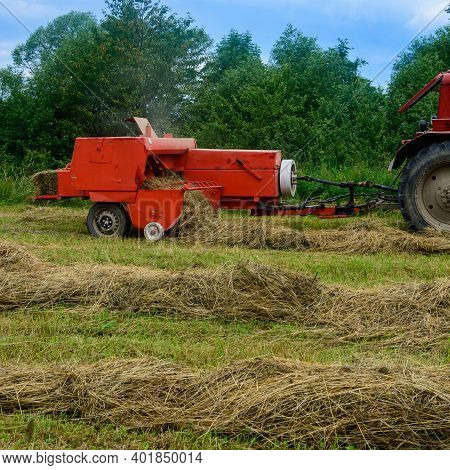 The Tractor Collects Dry Hay In The Field, The Hay Presses The Bale Press, Work In The Field.2020