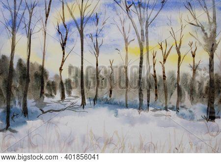A Winter Forest Snowy Landscape Watercolor Illustration