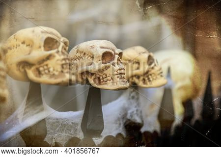 Picture With Grunge Texture Of A Row Of Skulls On A Metal Fence At Halloween