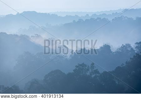 Tropical Rainforest In Layers Covered With Fog And Mist In Blue Tone In Morning.