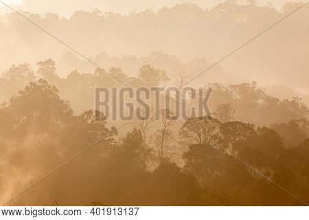 Tropical Rainforest In Layers Covered With Fog And Mist In Warm Tone In Morning.