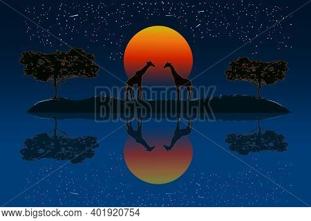 Couple Of Giraffes In The African Savanna At Sunset. Two Giraffe Silhouette Near The River Water Wit
