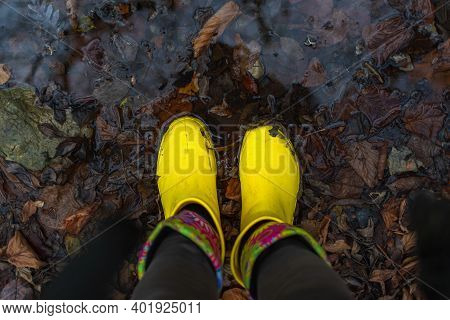Yellow Rubber Boots On The Grass Top View. Girl In Yellow Autumn Boots. Wet Fallen Oak Leaves. Conce
