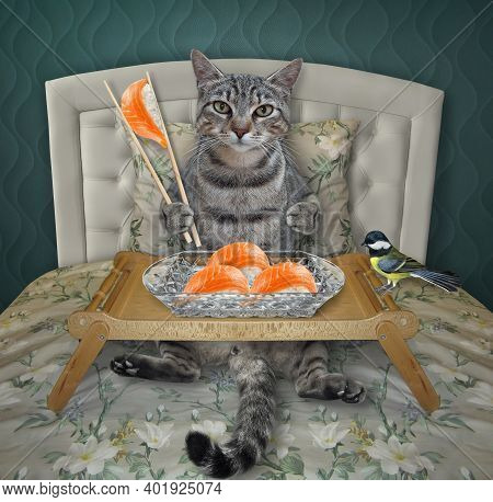 A Gray Cat Is Eating Sushi From A Wooden Tray In The Bed At Home.