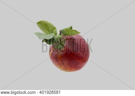 Red, Ripe Apple With Leaves Isolated On Gray Background.