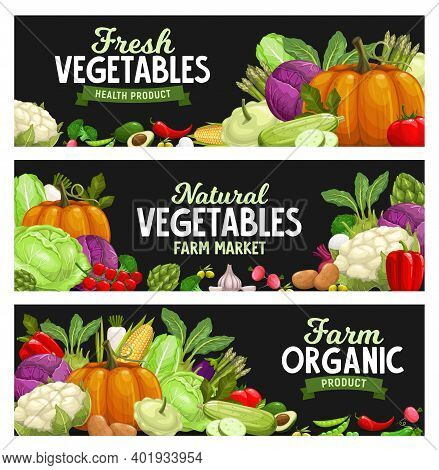 Vegetables Banners, Farm Market Food Veggies, Vector Organic Harvest. Natural Healthy Garlic, Pepper