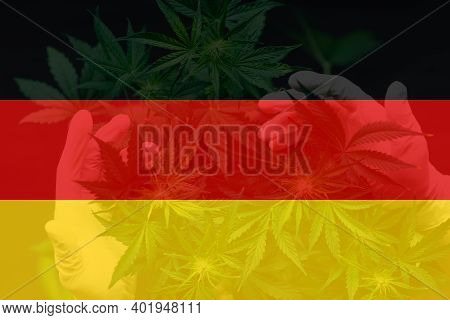 Leaf Of Cannabis Marijuana On The Flag Of Germany. Weed Decriminalization In Germany. Cannabis Legal