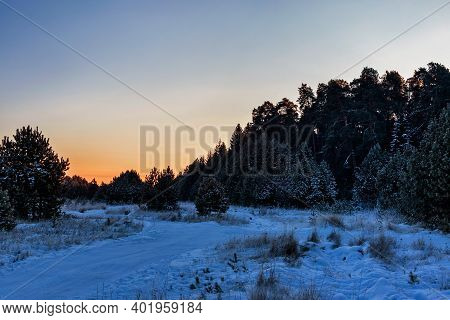 Road In A Pine Forest On A Frosty Winter Evening At Sunset