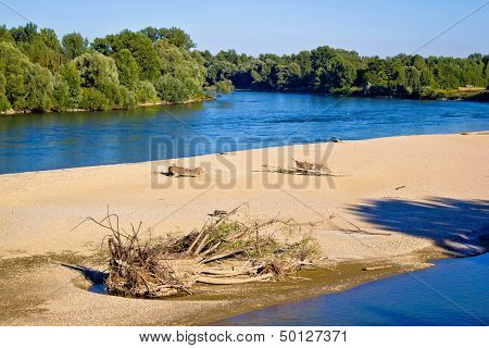 River Of Drava Green Nature