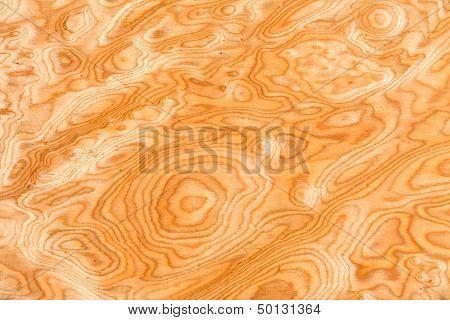 Real Wood Grain Texture