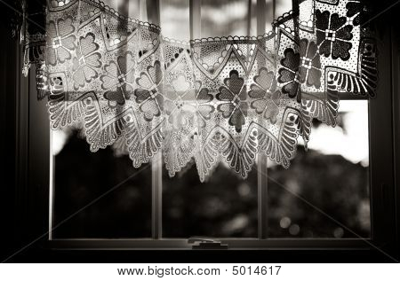 View Through Lace Curtains