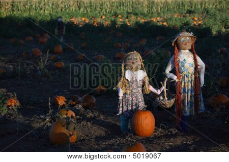 Scarecrow Girls