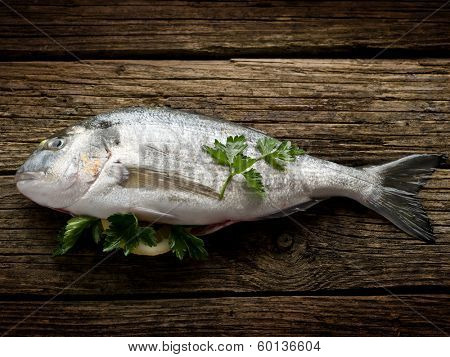 gilthead over wood ready to cooking