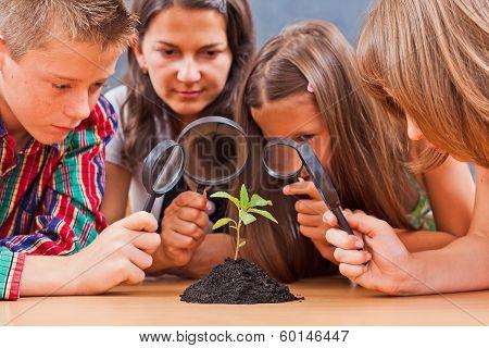Teacher And Pupils In Biology Class