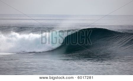 Indonesian Wave