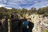 Tasman Arch, Tasman National Park, Tasmania, Australia poster