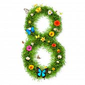 Fresh grass number 8 with blooms and butterflies. isolated on white background poster