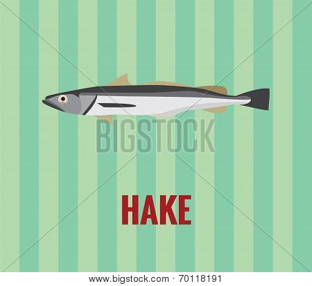 Hake - drawing on green background.