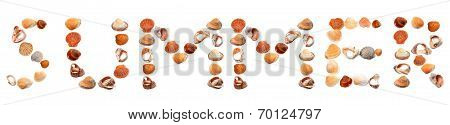 S U M M E R Text Composed Of Seashells