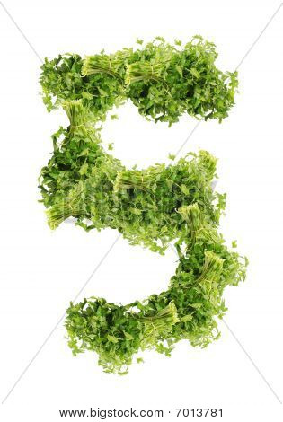 Number parsley