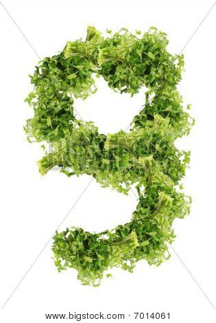 parsley nine-digit