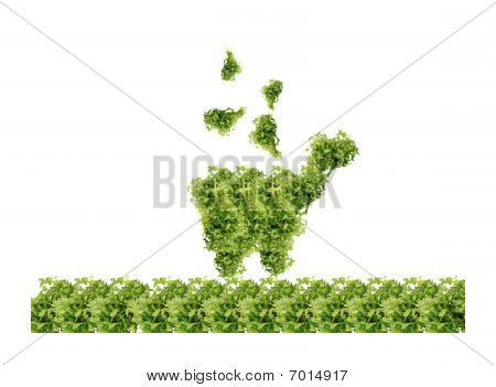 parsley shopping cart