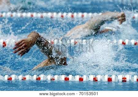 Male swimmer swimming crawl in a competition swim pool