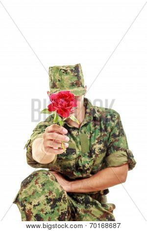 Soldier In Camouflage Uniform Kneeling Holding Flower