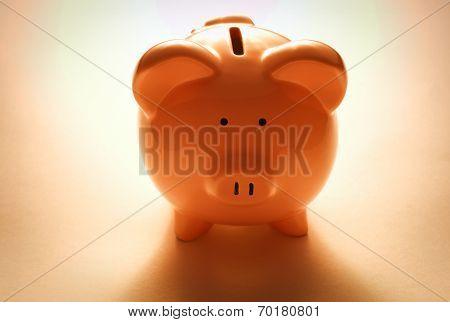 Backlit Pink Piggy Bank