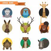 Animal avatars set with flat design. Vector Illustration poster