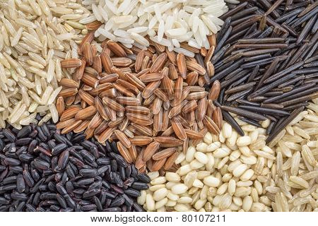 background of six rice grains including different brown rice grains, wild and black forbidden rice