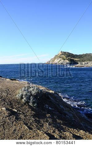 Sea Landscape Near Bandol, France