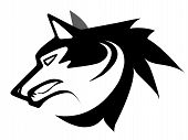 Vector illustration of wolf face black and white tattoo isolated on white poster