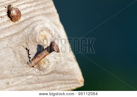 Aged Wooden Plank With A Two Rusty Nails
