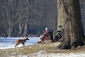 man and dog in winter park scene frankfurt poster