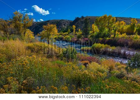 East River Near Almont Hwy 135 Colorado Fall Landscape