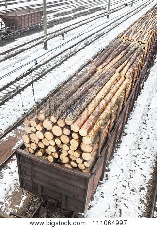 Freight Wagons With Logs