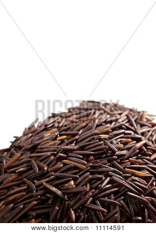 Wild rice on white background