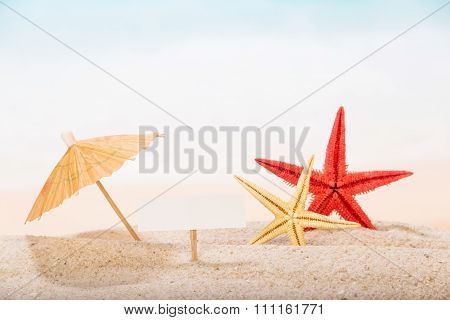 Starfish in the sand under an umbrella with sign