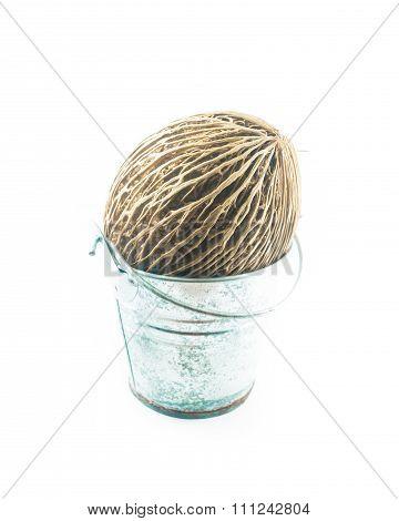 Othalanga In Small Bucket On White Background