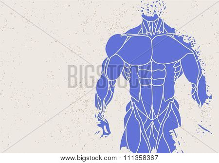 Fitness background of silhouette of a mans torso